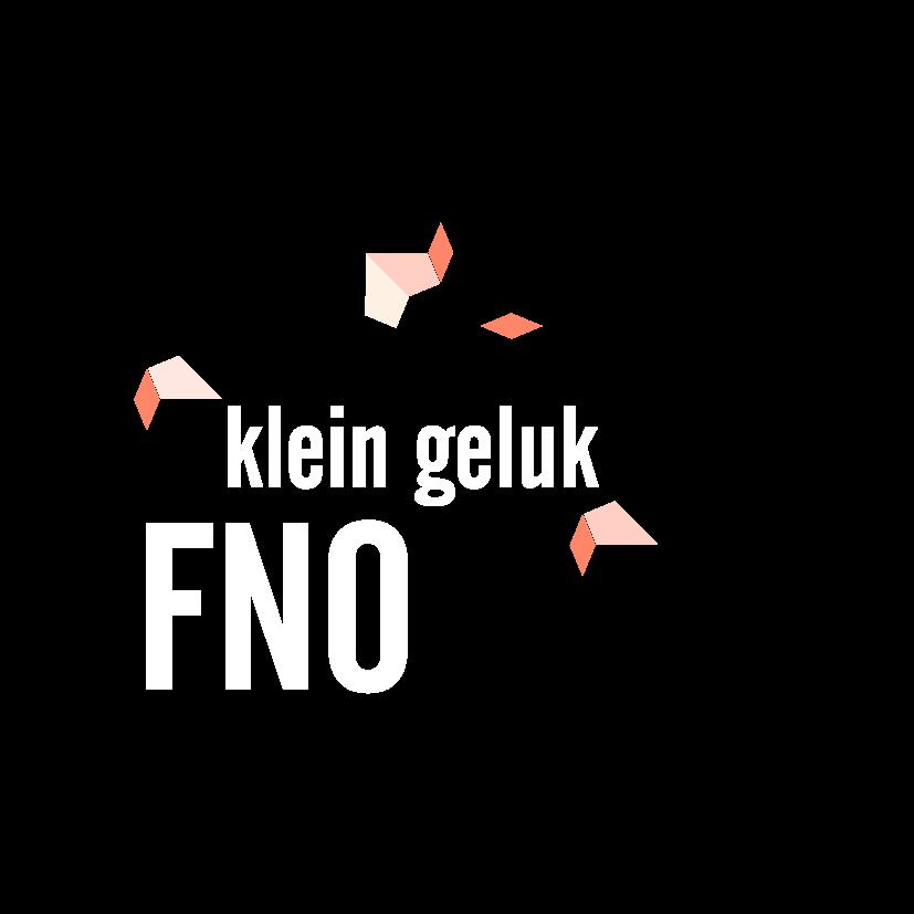 FNO logo